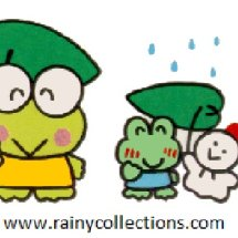rainy collections