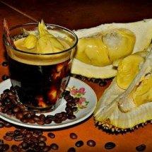 BANYUWANGI COFFEE LOVERS