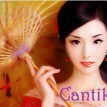 Cantik17