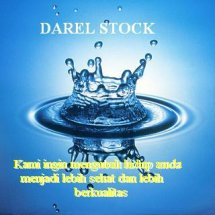 DAREL STOCK