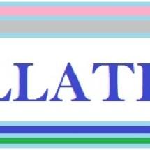 Fillatex