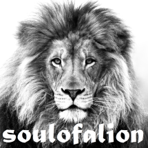 soulofalion