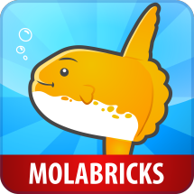 MOLABRICKS