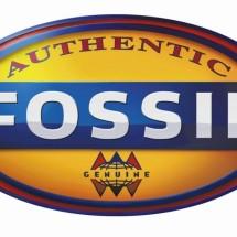 My Fossil Preloved