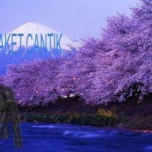 JACKET CANTIK