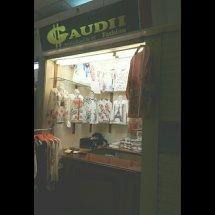 Gaudii Fashion
