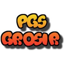 Logo PGS Grosir