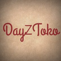 Dayz Toko