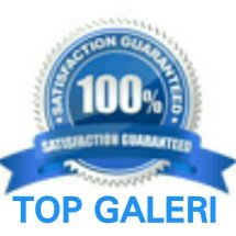Top Galeri
