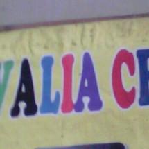 Novalia Cell