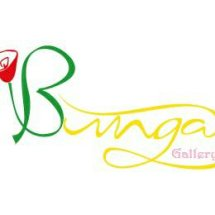 Bunga gallery