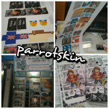 Parrotskin Indonesia