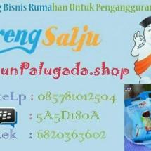 Rimbun Palugada shop bgr