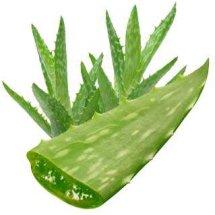 Mahkota Herbal Djaya