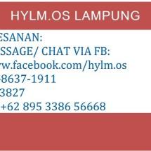 HYLM ONLENSHOP