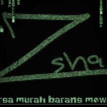 Logo ZSHA shop