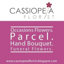 Cassiopeia Florist