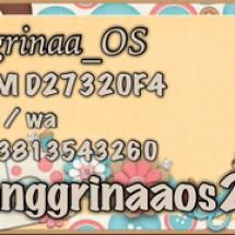 Anggrinaa_OS