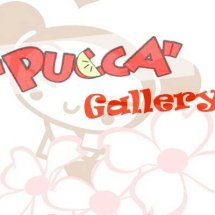Pucca Gallery 2