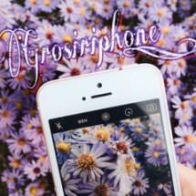 Grosiriphone_