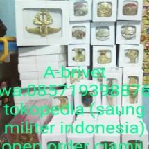 saung militer indonesia
