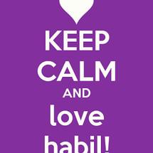 habil shop