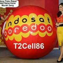T2cell