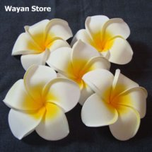 Wayan Store