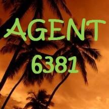 Agent 6381