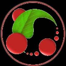 Indonesia Herbal's
