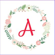 Online Shop Anam