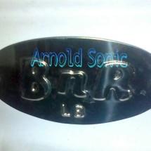 Arnold Sonic