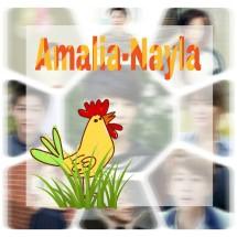 amalia-nayla