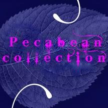 pecabeancollection