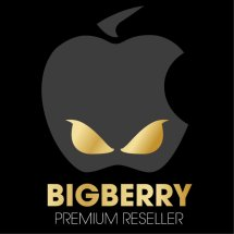 Logo Big Berry Cellular