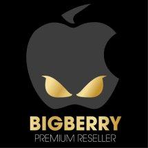 Logo Big Berry Cellular