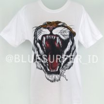 BlueSurfer