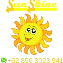 Sunshine Edutoys