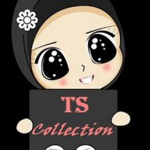 TS Collections