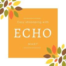 Logo Echo Mart