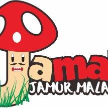Jamur Malang