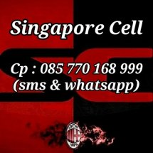 Singapore Cell