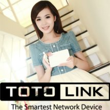 Totolink Online Store