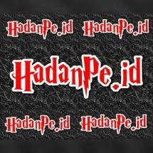 Logo HaDanPe ID