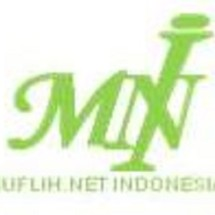 MNI Shop Logo