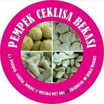 Logo PEMPEK CEK LISA