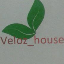 Logo velozhouse2