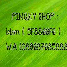pingky shop1