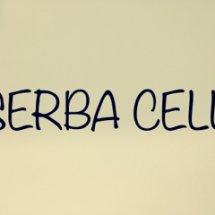 Serba cell Logo