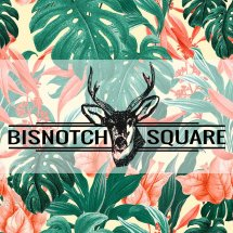 BISNOTCH SQUARE